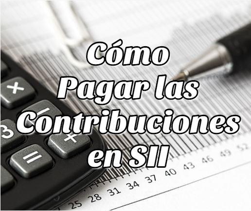 Cómo Pagar las Contribuciones en SII