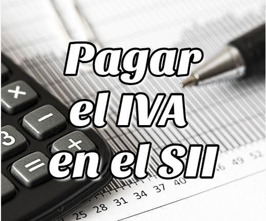 Cómo pagar el IVA Online en el SII