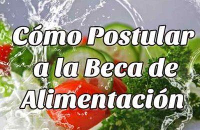 beca alimentación chile