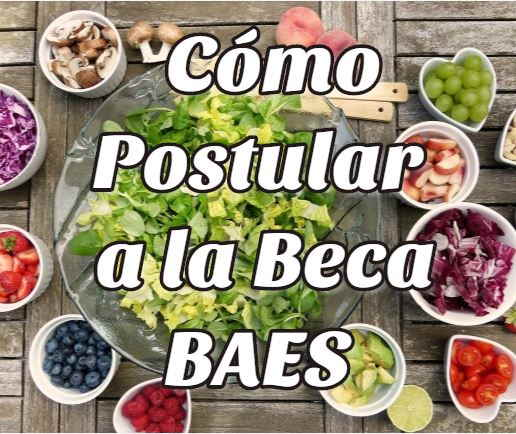 postular beca Baes