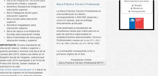beca técnico profesional 3
