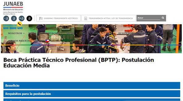 beca técnico profesional 5
