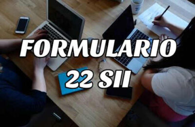 formulario 22 sii